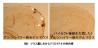 アイキャッチ:理研がアルツハイマー型認知症を進行させるバイセクト糖鎖発見。治療薬に期待