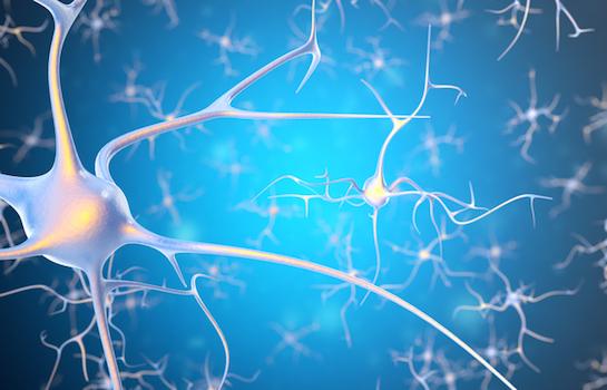 超音波と免疫療法の組み合わせ、アルツハイマー病治療に効果?