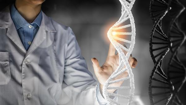 革新的な方法、アルツハイマー病の治療に役立つ可能性(学術発表)