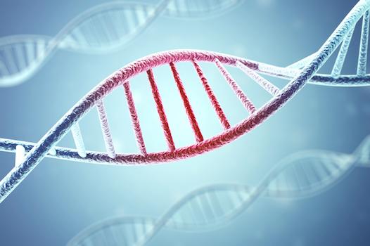 アイキャッチ:アルツハイマー病の原因となる遺伝子を推定(東北大学)