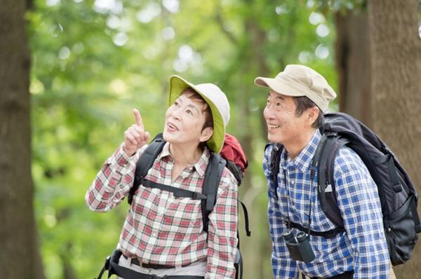 アイキャッチ:ホタテ・プラズマローゲンで、知的で前向きな生活をサポート!