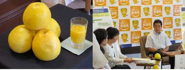 アイキャッチ:愛媛県、河内晩柑果汁飲料の認知機能に関する特許出願