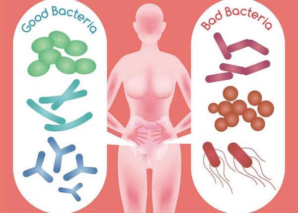 アイキャッチ:腸内細菌とアルツハイマー病に関係があるってホント?