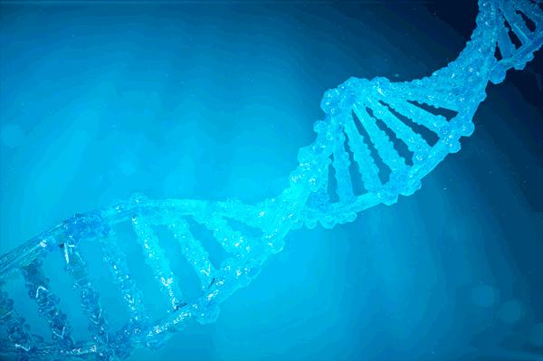 アイキャッチ:理化学研、ゲノム編集でアルツハイマー病予防の道拓く