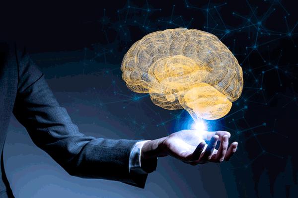 アイキャッチ:新潟大、脳の水に着目、脳疾患を改善する薬剤候補を開発