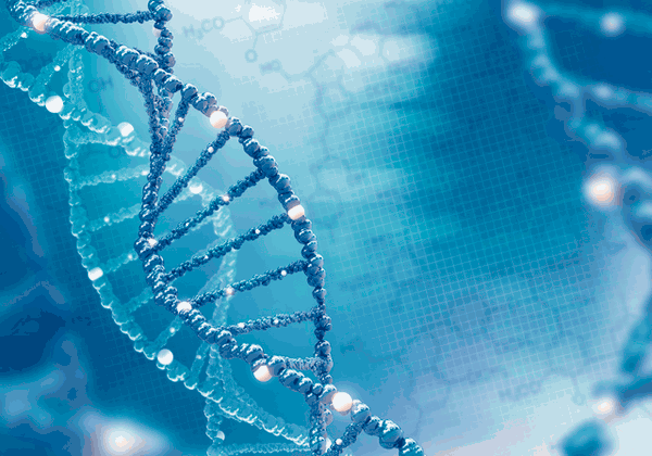 アイキャッチ:キノファーマと量子研、アルツハイマー病新薬の共同研究