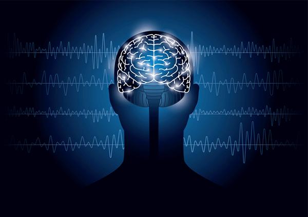 アイキャッチ:横浜市大ら、神経回路形成因子LOTUSの記憶機能制御を明らかに